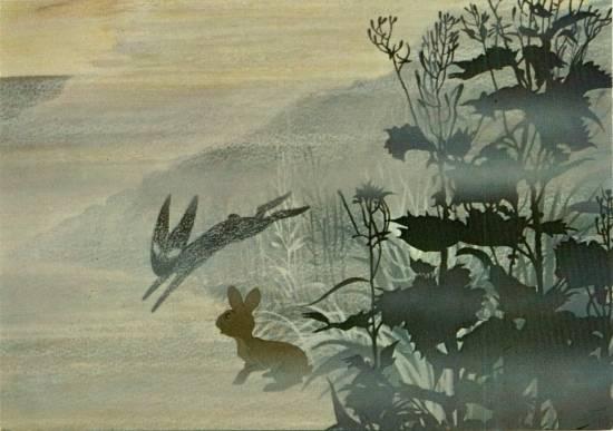 black_rabbit